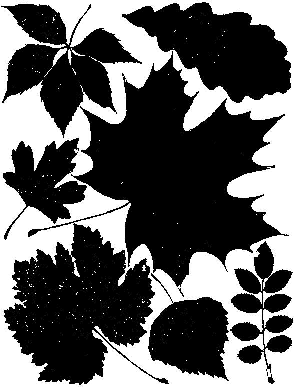 узор кленовый лист крючком